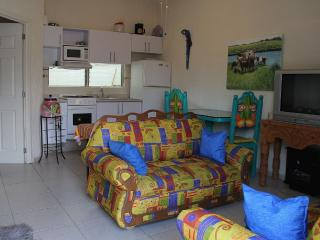 Nice Villa with Deck and Internet Access - Ajijic vacation rentals