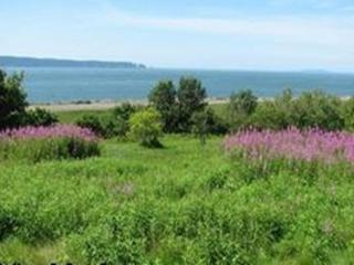 2 bedroom Cottage with Deck in Parrsboro - Parrsboro vacation rentals