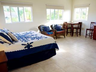 Romantic Private room with Deck and Internet Access - Kailua vacation rentals