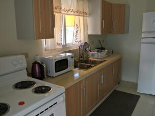 1 bedroom Apartment with Internet Access in Crown Point - Crown Point vacation rentals