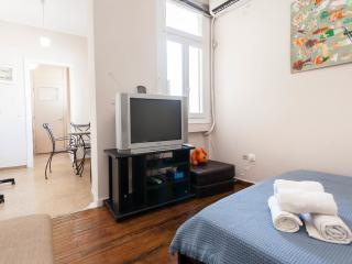 Beautiful Condo with Internet Access and A/C - Athens vacation rentals