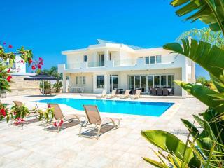 VILLA THEOMELI - A BEAUTIFUL RETREAT - Protaras vacation rentals