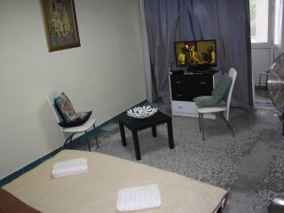Victoriei square studio,Bucharest city center. - Bucharest vacation rentals