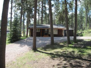 Lazy Pines Cabin - Rapid City vacation rentals