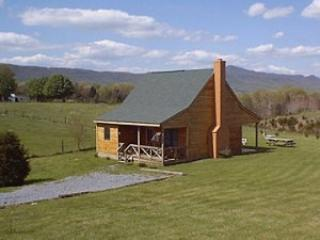 Beautiful Cabin with Internet Access and A/C - Luray vacation rentals