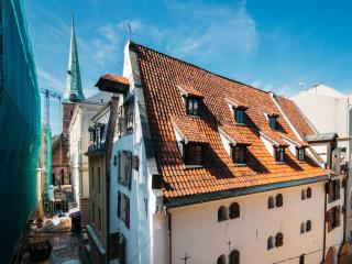 Spacious home of Swedish Gate's - Riga vacation rentals