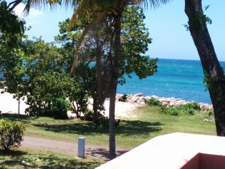 Turquoise Sands Oceanview,on the beach, wifi - Negril vacation rentals
