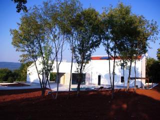 New Villa peaceful large pool offering privacy - Rakalj vacation rentals