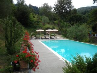 Podere Le Baruti/Quercia - Montevarchi vacation rentals