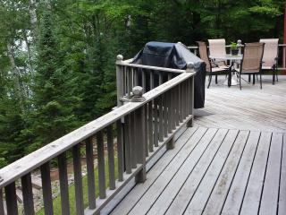 Amazing lake house/gorgeous lake on chain - Presque Isle vacation rentals