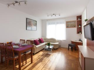 Nice, cozy and fully equipedd apartment, parking - Zagreb vacation rentals