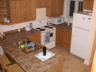 Luxury lakefront cottage complete with boat - Apsley vacation rentals