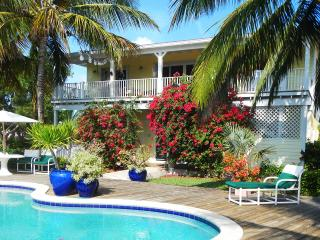 Dillycrab Beach House with Rainwater Pool, Games Room and Kayaks - Great Exuma vacation rentals