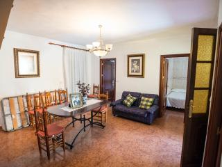 Nice 5 bedroom House in Malaga - Malaga vacation rentals