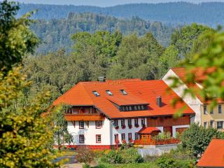 Nice Condo with Deck and Internet Access - Dachsberg vacation rentals