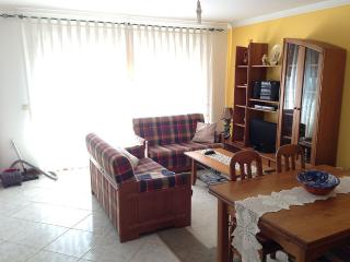 T2 in Furadouro Beach with sea view by the beach - Ovar vacation rentals