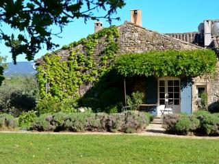 Oppede Estate - Loppedine House rental near Oppčde-le-Vieux Luberon in Provence - Oppede vacation rentals