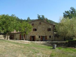 Charming farmhouse with large pool in Umbria - San Giustino vacation rentals