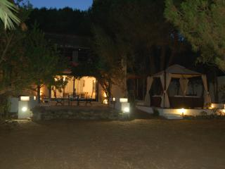 Villa le Stelle - Torre delle Stelle vacation rentals