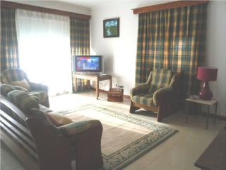 In the old town, between the green countryside - Terceira vacation rentals