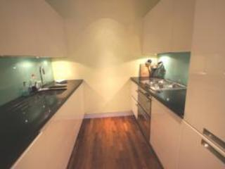Shaftesbury Ave Apartment - London vacation rentals
