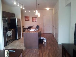 The Parkside at Legacy1PL57652111 - Plano vacation rentals