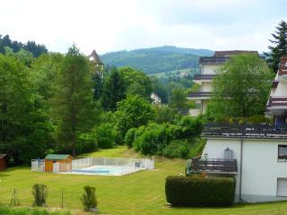 Studio en montagne avec piscine et sauna - Le Hohwald vacation rentals