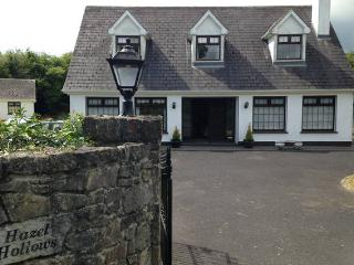 High quality, sleeps 1-6, 8 mins Athlone, Ireland - Athlone vacation rentals