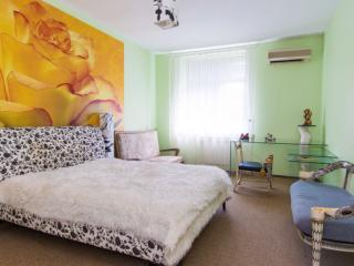 Apartment VIP - Moscow vacation rentals