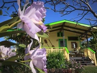 Hotel Pa'amalu - Captain Cook vacation rentals