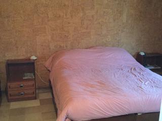 Mansarda indipendente con terrazzo - Montesolaro vacation rentals