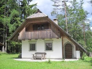 Charming House in the Mids of Nature - Mojstrana vacation rentals