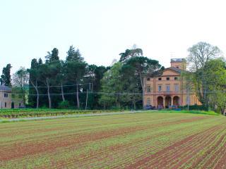 La Riniera, un'affascinante Villa tra le peonie - Castel San Pietro Terme vacation rentals
