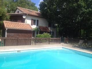Beautiful Detached Farmhouse with Large Pool - Lesignac-Durand vacation rentals