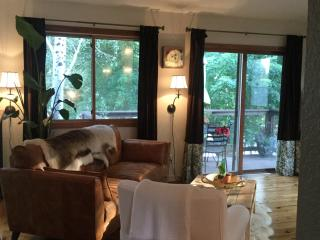 Mtn View Home, Across from Crystal River - Carbondale vacation rentals