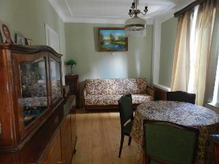 Lovely Condo with Internet Access and Wireless Internet - Vladimir vacation rentals