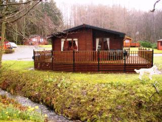 Comfortable 3 bedroom Cabin in Rowardennan with Internet Access - Rowardennan vacation rentals