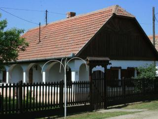 Nice House with Outdoor Dining Area and Television - Tiszacsege vacation rentals
