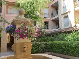 Résidence Mazarin - Cours Mirabeau - Aix-en-Provence vacation rentals