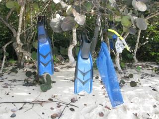 Westin St John Virgin Islands - Cruz Bay vacation rentals