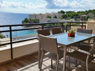 Stunning Modern Oasis on the Beach - Cala Vinyes vacation rentals