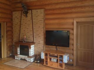 3 bedroom Cottage with Internet Access in Medvezhyegorsk - Medvezhyegorsk vacation rentals
