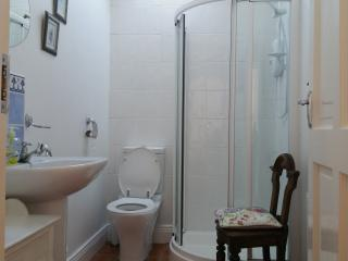 Tipperary Irish Cottage - Modern, Rural - Thurles vacation rentals