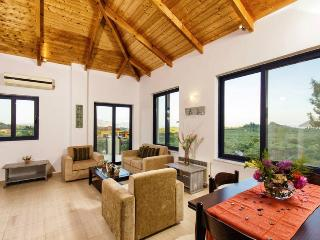 Nice Villa with Internet Access and A/C - Lithakia vacation rentals