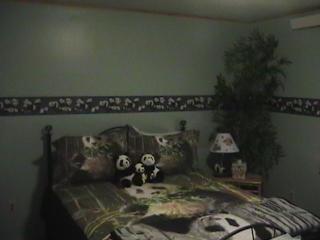 panda room in king mnt b&b - Moore vacation rentals