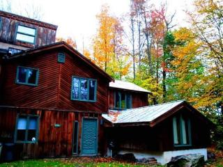 Rustic Killington Cabin - Golf, Hike, & Getaway! - Killington vacation rentals