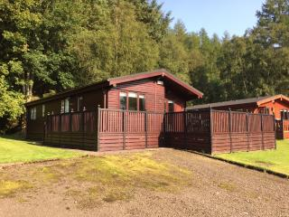 Nice Lodge with Deck and Internet Access - Rowardennan vacation rentals
