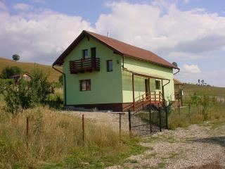 Bright House with Deck and Refrigerator - Cluj County vacation rentals