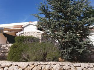 Lavender House - Mandre vacation rentals