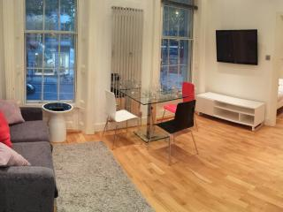 Central London, Covent garden Lrg one bedroom flat - London vacation rentals